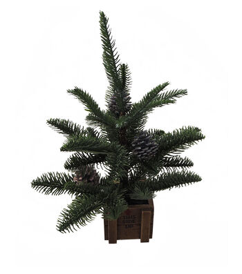 Blooming Holiday Christmas Small Pine Tree in Wood Crate