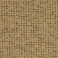 Crypton Upholstery Fabric 54\u0022-Colburn Sand