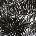 Oudoor Canvas Fabric-Tonal Black & White Palm Leaves