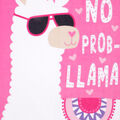 No Sew Fleece Throw 48\u0022-No Probllama