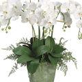 Bloom Room Luxe 28\u0027\u0027 Orchid Lace Fern In Ceramic Pot-White