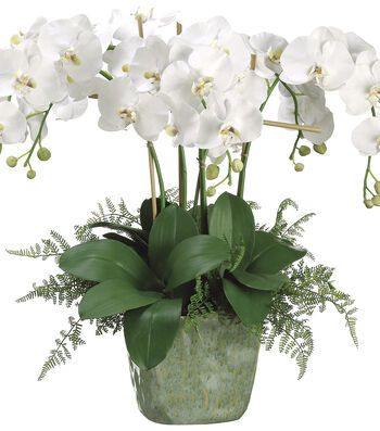 Bloom Room Luxe 28'' Orchid Lace Fern In Ceramic Pot-White