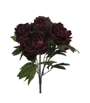 Bloom Room Peony Bush-Burgundy