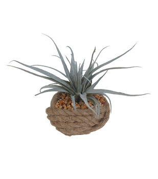 Seaport Small Rope Airplant