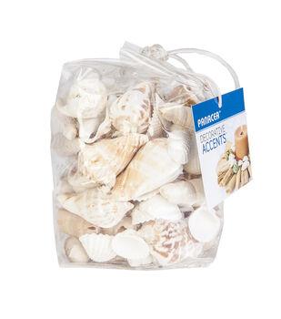 White Sea Shells 12 Oz