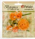 Botanica Gypsy Rose Branch 3\u0022 Long-Peach