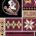 Florida State Seminoles Fleece Fabric-Sweater