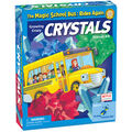 The Magic School Bus Growing Crazy Crystals Kit