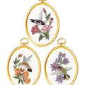 Hummingbirds Embroidery Kit Set Of 3-3\u0022X4\u0022 Stitched In Floss