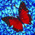 Diamond Dotz Diamond Embroidery Facet Art Kit 14\u0027\u0027X14\u0027\u0027-Flutterby Red