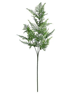 Fresh Picked Spring 30'' Asparagus Fern Spray-Green