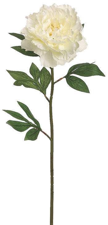 "Bloom Room 27"" Pearl Peony Stem-Cream"