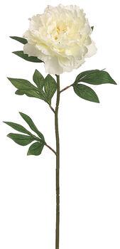 """Bloom Room 27"""" Pearl Peony Stem-Cream"""