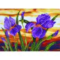 Diamond Dotz Diamond Embroidery Facet Art Kit 23.5\u0027\u0027X17.75\u0027\u0027-Iris Sunset