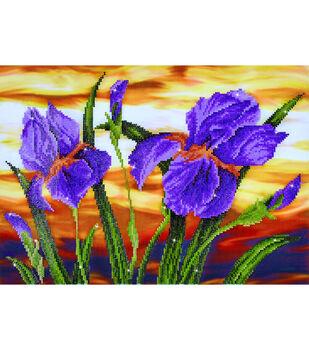 Diamond Dotz Diamond Embroidery Facet Art Kit 23.5''X17.75''-Iris Sunset