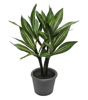 Fresh Picked Spring 14'' Potted Foliage Arrangement