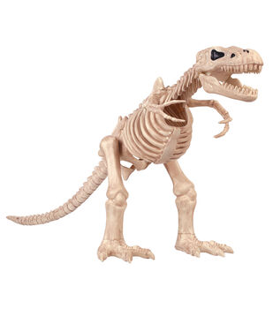 The Boneyard Large Mystical Dinosaur Bones