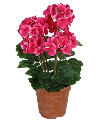 Fresh Picked Spring 18'' Potted Geraniums-Pink