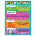 Teacher Created Resources Type of Sentences Chart 6pk