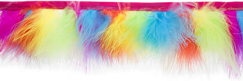 Wrights Feather Trim 3''x10 yds-Rainbow