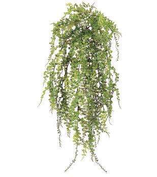 Petite Maidenhair Fern Bush