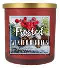 Hudson 43 Candle & Light 14 oz. Frosted Winterberries Jar Candle