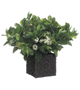 Privet Bloom & Queen Anne's Lace in Cement Pot 16''-Green