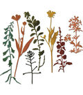 Sizzix Thinlits Tim Holtz Alterations 7 pk Dies-Wildflowers #2