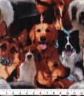 Anti-Pill Plush Fleece Fabric-Dog Collage Painted