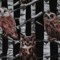 Novelty Cotton Fabric-Owls In Birch Trees
