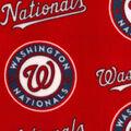 Washington Nationals Fleece Fabric -Logo