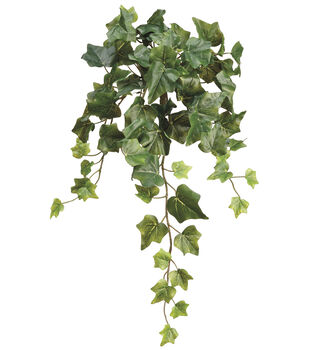 Bloom Room 22'' Ivy Leaf Bush-Dark Green