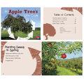 Explore Life Cycles, Set of 6 books