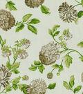 Home Decor 8\u0022x8\u0022 Fabric Swatch-Waverly SNS Charlotte/Grass