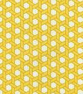 Home Decor 8\u0022x8\u0022 Swatch Fabric-Waverly SNS Shoji Canary