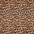 Barrow Multi-Purpose Decor Fabric 56\u0022-Safari
