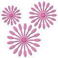 Spellbinders Shapeabilities Die D-Lites-Blooms 1