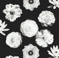 Home Decor 8\u0022x8\u0022 Fabric Swatch-IMAN Foto Fleur Onyx
