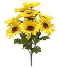 Blooming Autumn 17\u0027\u0027 Sunflower Bush-Yellow