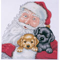 Design Works Counted Cross Stitch Kit Santa With Puppies