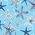 PKL Studio Outdoor Fabric 9\u0022x9\u0022 Swatch-Stars Collide Nautical