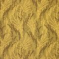 Home Decor 8\u0022x8\u0022 Fabric Swatch-Upholstery Fabric Barrow M8337-5151 Bonsai