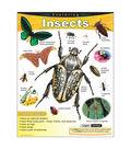 Exploring Insects Learning Chart 17\u0022x22\u0022 6pk