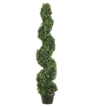 Spiral Pond Boxwood Topiary in Plastic Pot 4'