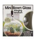 Mini Blown Glass Hanging Terrarium