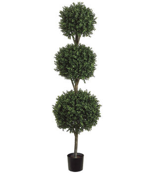 Triple Ball Shaped Boxwood Topiary in Plastic Pot 6'