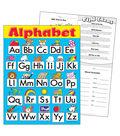 Alphabet Fun Learning Chart 17\u0022x22\u0022 6pk