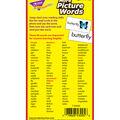 TREND enterprises, Inc. More Picture Words Skill Flash Cards, 2 Sets