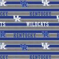 University of Kentucky Wildcats Cotton Fabric -Polo Stripe