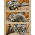 Max The Cat Counted Cross Stitch Kit-10\u0022X15\u0022 14 Count